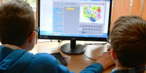 Computing Education in Schools
